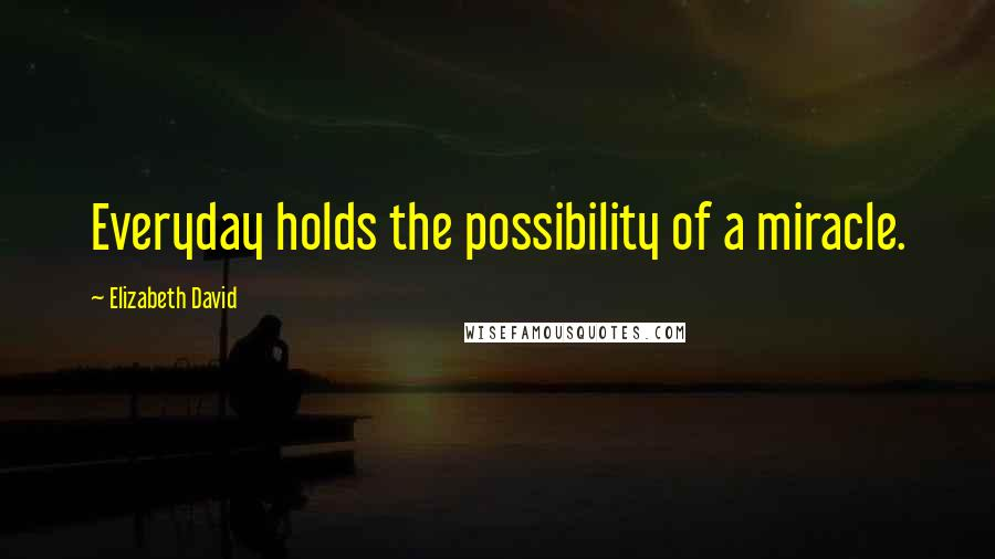 Elizabeth David quotes: Everyday holds the possibility of a miracle.