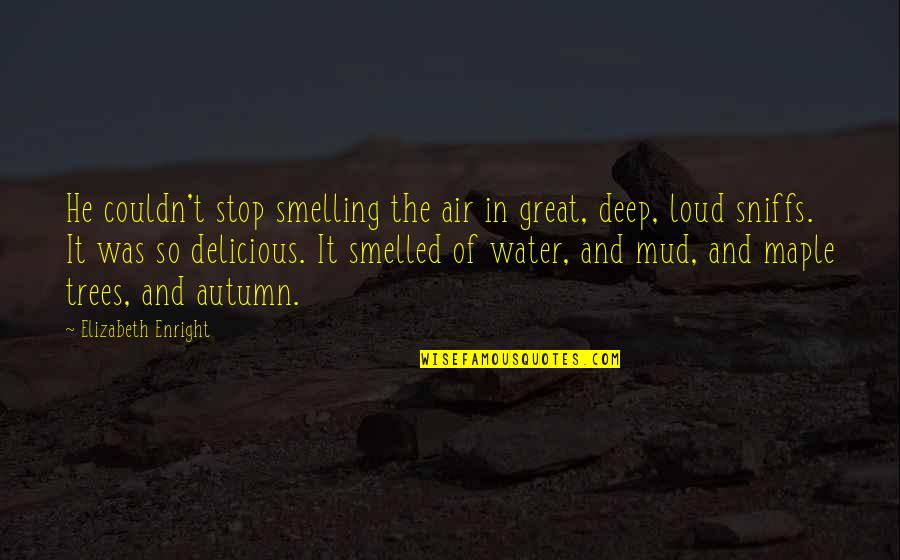 Elizabeth Enright Quotes By Elizabeth Enright: He couldn't stop smelling the air in great,