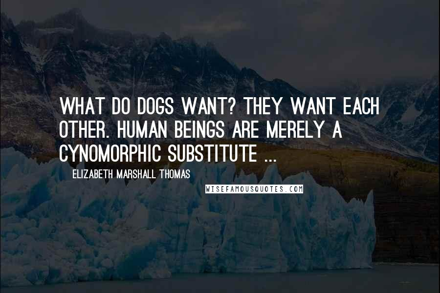 Elizabeth Marshall Thomas quotes: What do dogs want? They want each other. Human beings are merely a cynomorphic substitute ...