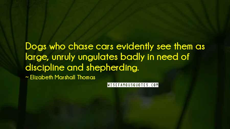 Elizabeth Marshall Thomas quotes: Dogs who chase cars evidently see them as large, unruly ungulates badly in need of discipline and shepherding.