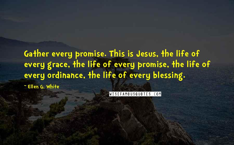 Ellen G. White quotes: Gather every promise. This is Jesus, the life of every grace, the life of every promise, the life of every ordinance, the life of every blessing.