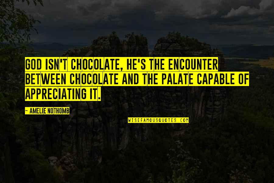 Ellows Quotes By Amelie Nothomb: God isn't chocolate, he's the encounter between chocolate