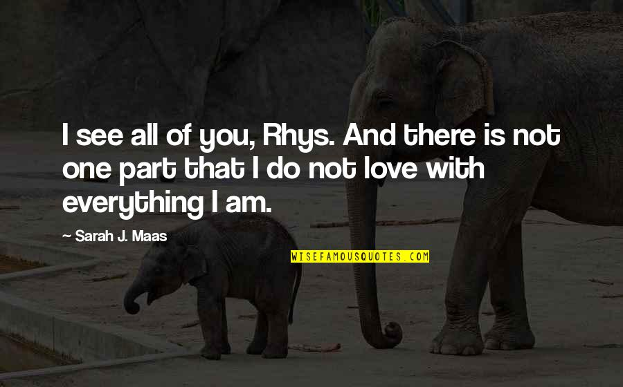 Elmer The Patchwork Elephant Quotes By Sarah J. Maas: I see all of you, Rhys. And there