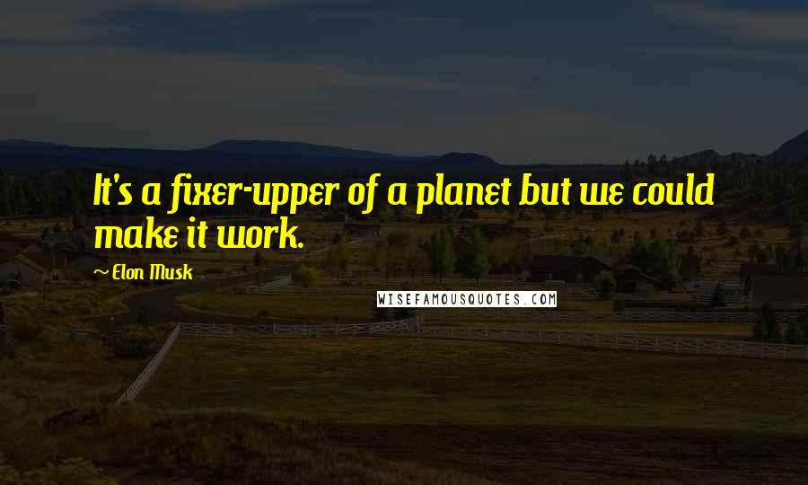 Elon Musk quotes: It's a fixer-upper of a planet but we could make it work.