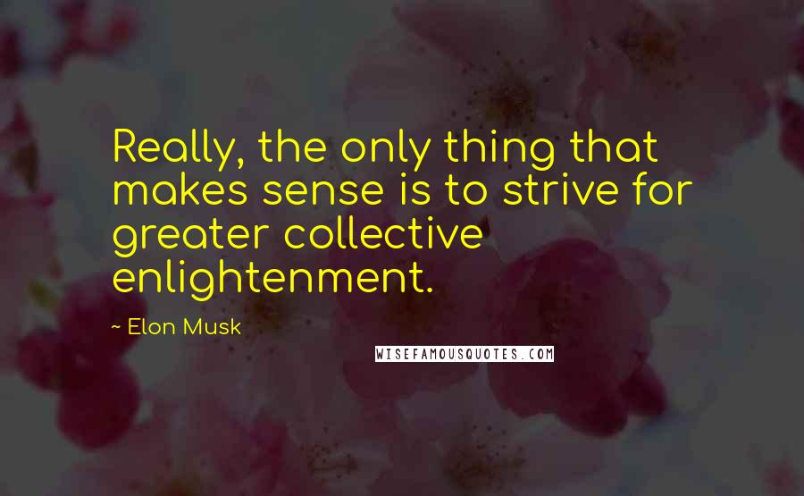 Elon Musk quotes: Really, the only thing that makes sense is to strive for greater collective enlightenment.