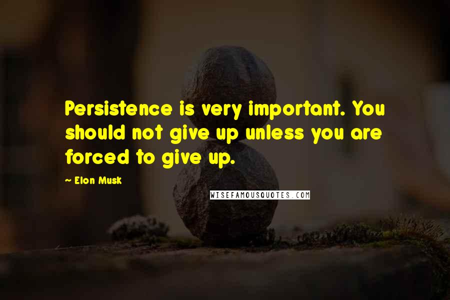 Elon Musk quotes: Persistence is very important. You should not give up unless you are forced to give up.