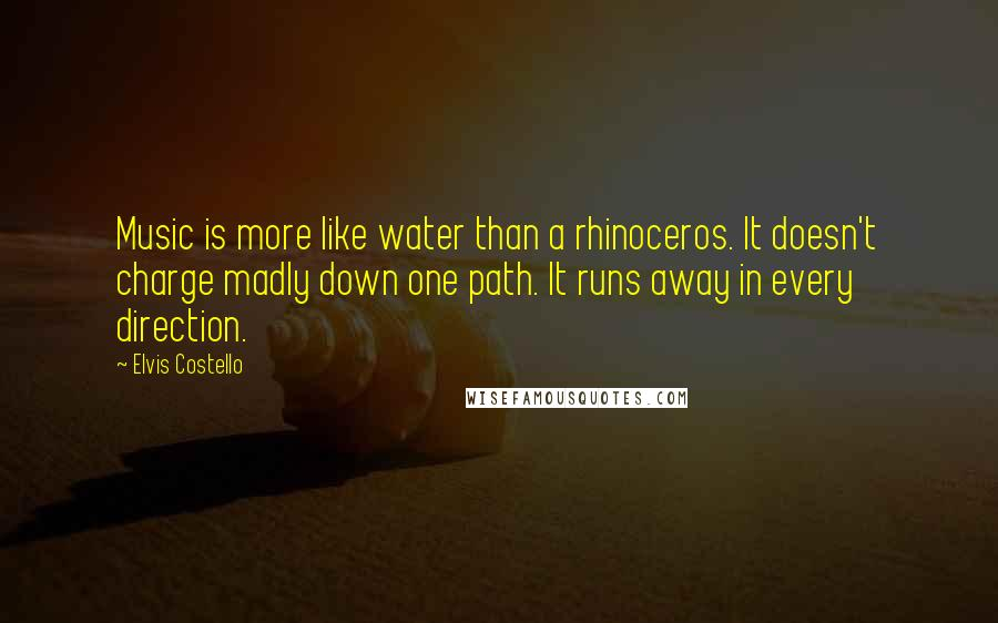 Elvis Costello quotes: Music is more like water than a rhinoceros. It doesn't charge madly down one path. It runs away in every direction.