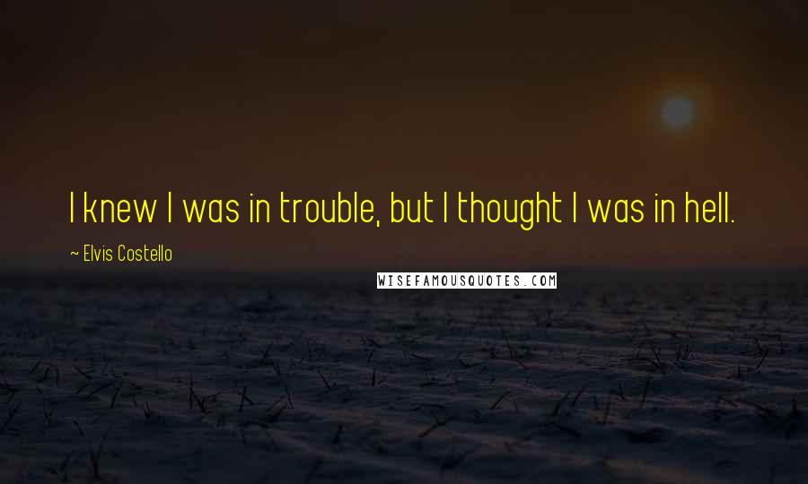Elvis Costello quotes: I knew I was in trouble, but I thought I was in hell.