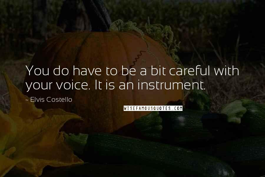 Elvis Costello quotes: You do have to be a bit careful with your voice. It is an instrument.