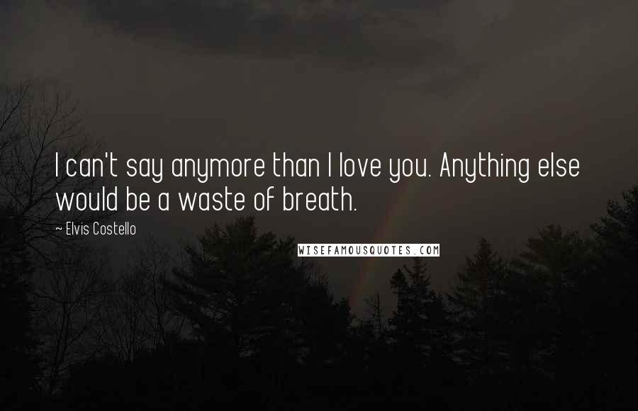 Elvis Costello quotes: I can't say anymore than I love you. Anything else would be a waste of breath.