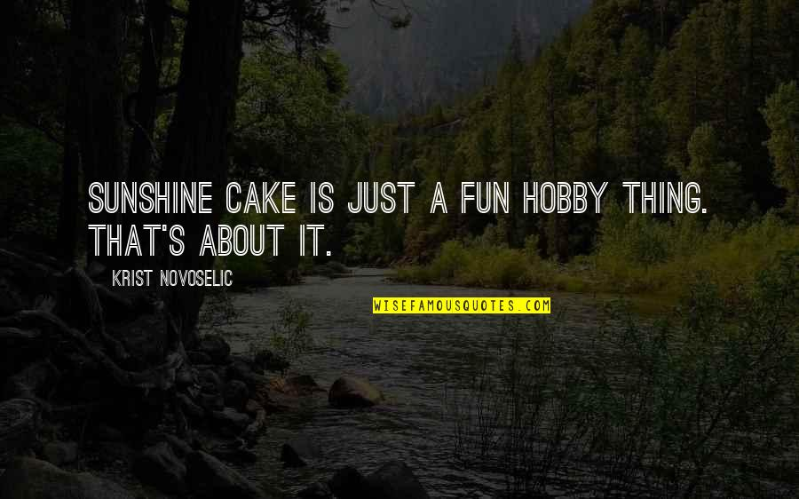 Elwin Leper Quotes By Krist Novoselic: Sunshine Cake is just a fun hobby thing.