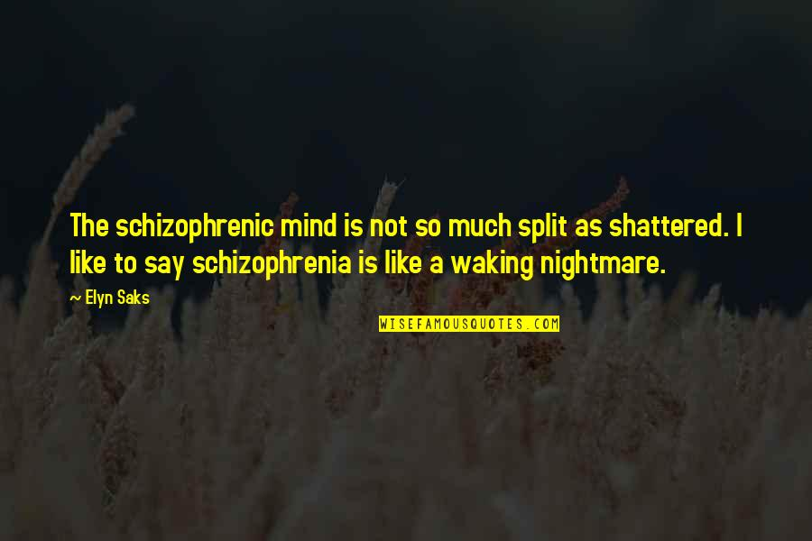 Elyn R Saks Quotes By Elyn Saks: The schizophrenic mind is not so much split