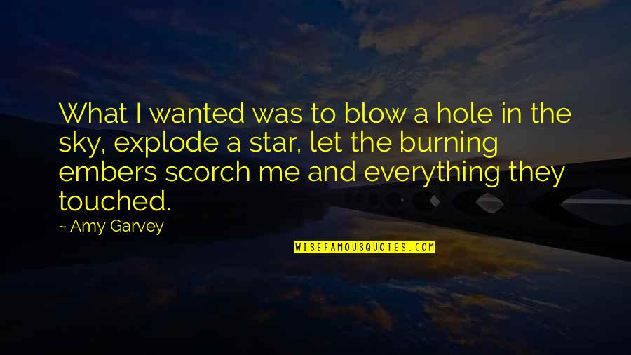 Embers Quotes By Amy Garvey: What I wanted was to blow a hole