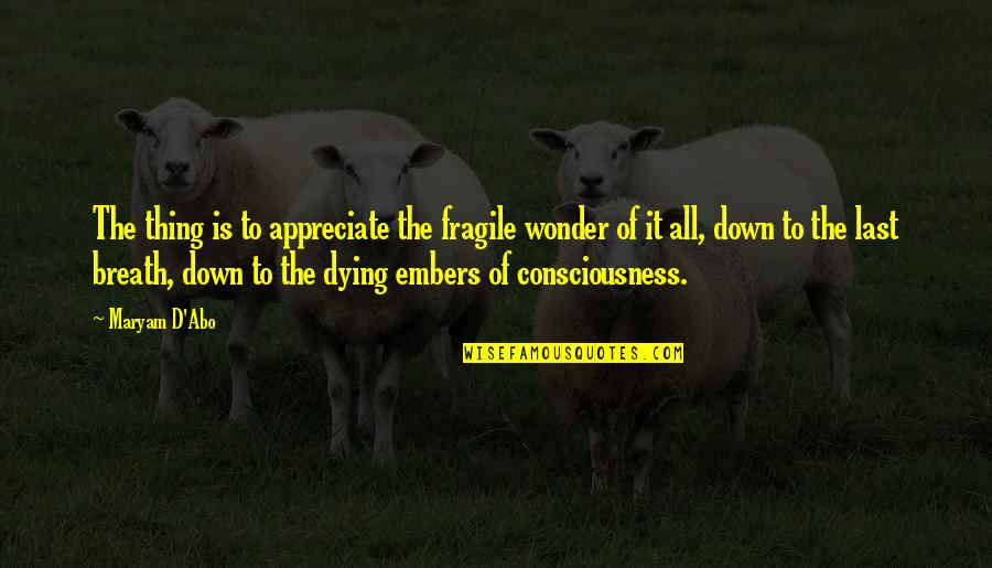 Embers Quotes By Maryam D'Abo: The thing is to appreciate the fragile wonder