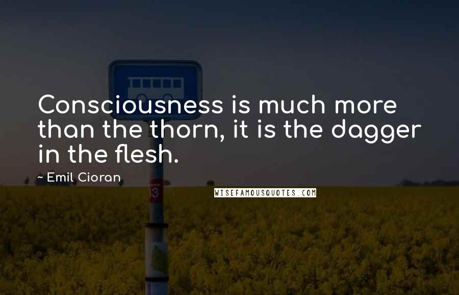 Emil Cioran quotes: Consciousness is much more than the thorn, it is the dagger in the flesh.