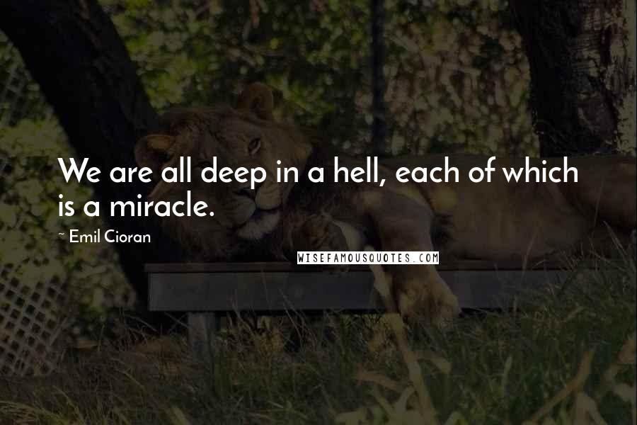 Emil Cioran quotes: We are all deep in a hell, each of which is a miracle.