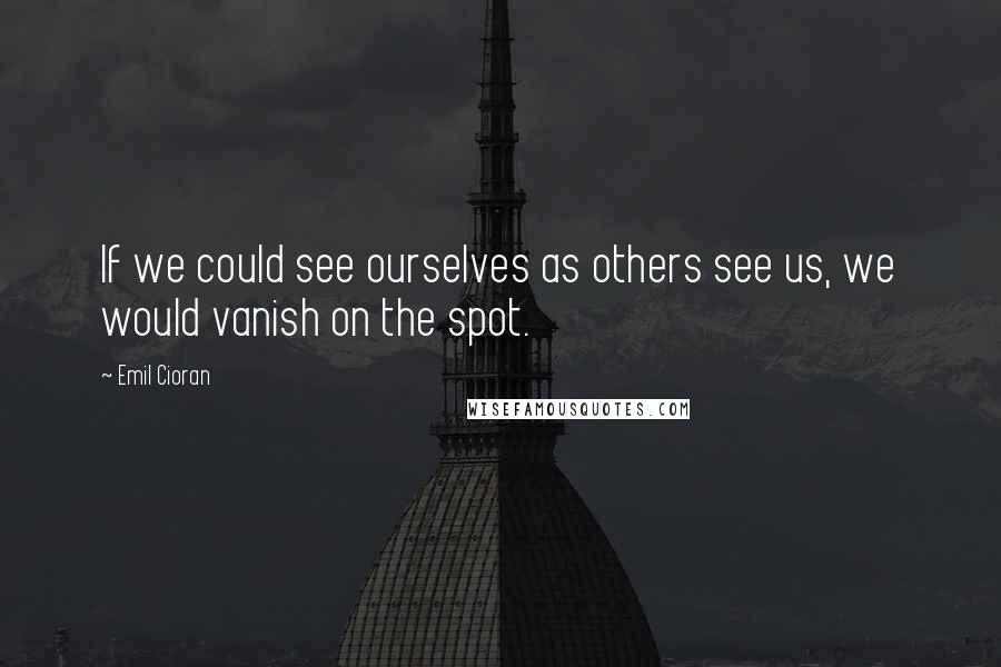 Emil Cioran quotes: If we could see ourselves as others see us, we would vanish on the spot.