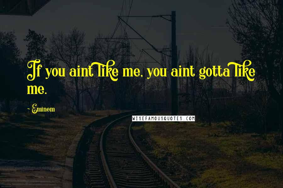 Eminem quotes: If you aint like me, you aint gotta like me.