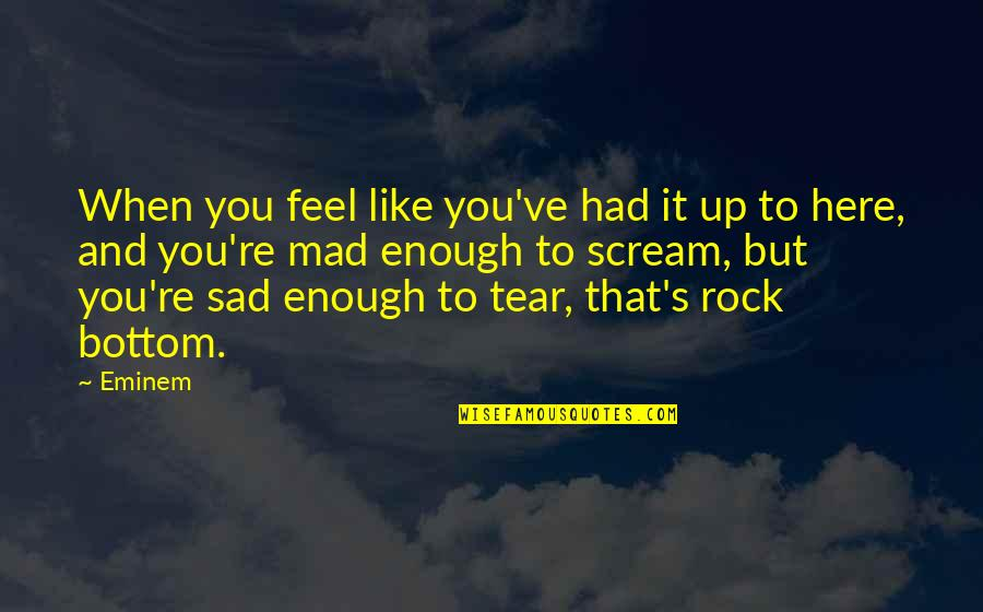 Eminem Rock Bottom Quotes By Eminem: When you feel like you've had it up