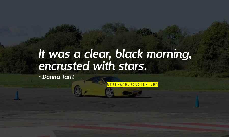 Encrusted Quotes By Donna Tartt: It was a clear, black morning, encrusted with