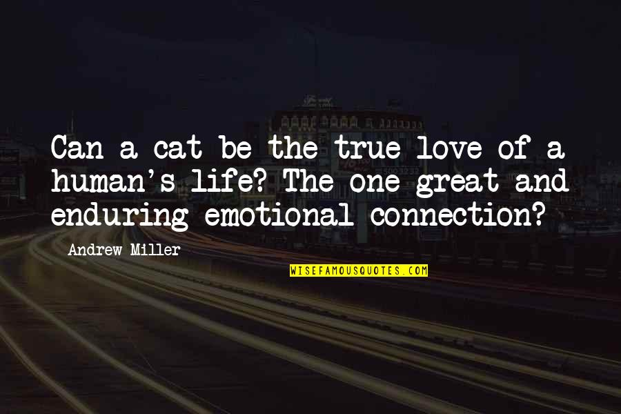 Enduring Love Quotes By Andrew Miller: Can a cat be the true love of