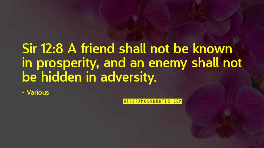 Enemy And Friend Quotes By Various: Sir 12:8 A friend shall not be known