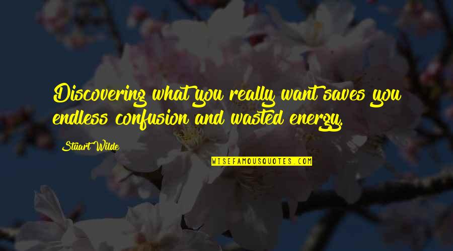 Energy And Focus Quotes By Stuart Wilde: Discovering what you really want saves you endless