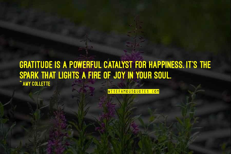Energy And Motivation Quotes By Amy Collette: Gratitude is a powerful catalyst for happiness. It's