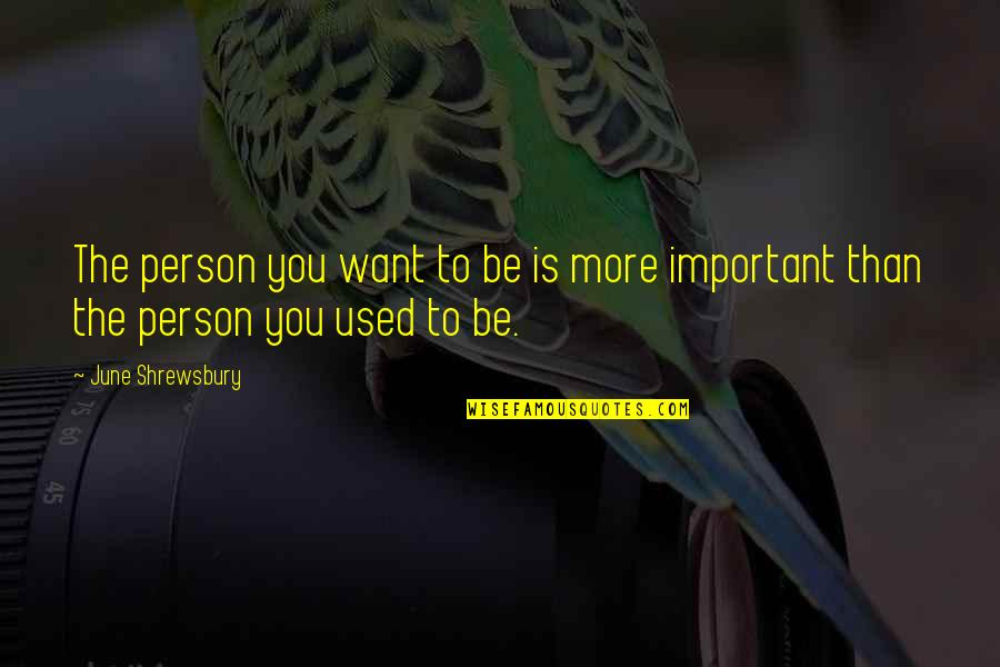 Enfeebl Quotes By June Shrewsbury: The person you want to be is more