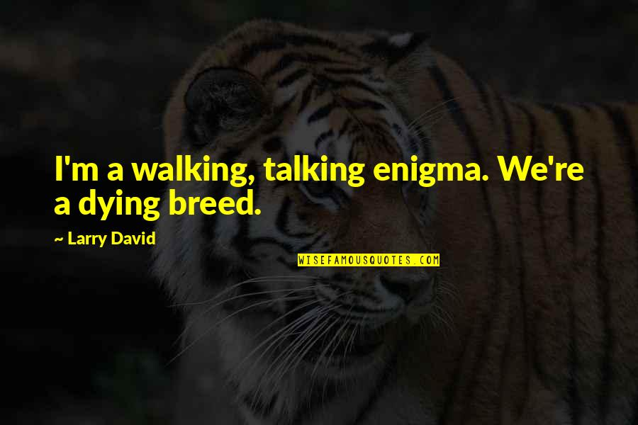 Enigma Quotes By Larry David: I'm a walking, talking enigma. We're a dying