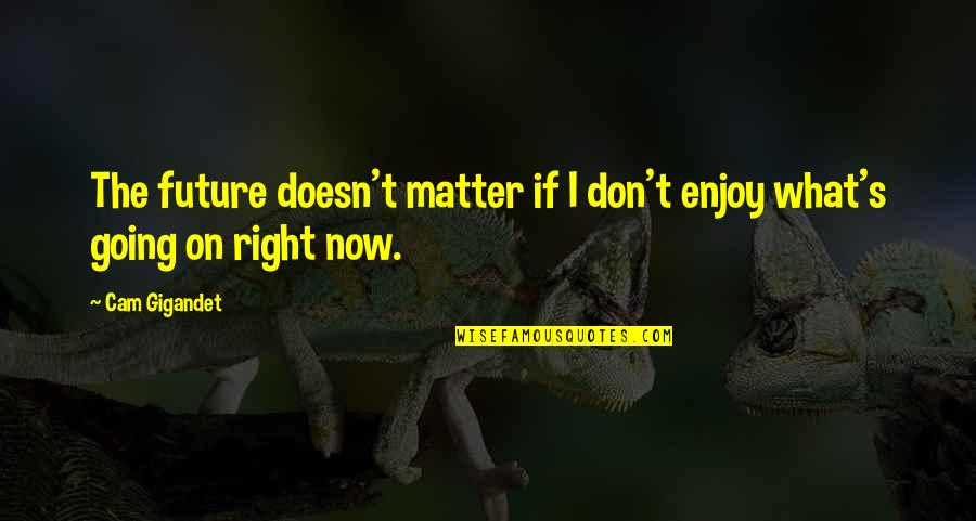 Enjoy Right Now Quotes By Cam Gigandet: The future doesn't matter if I don't enjoy
