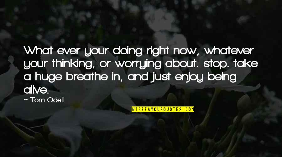 Enjoy Right Now Quotes By Tom Odell: What ever your doing right now, whatever your