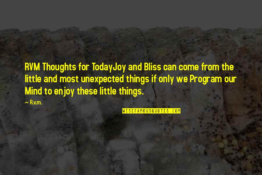 Enjoy The Little Things In Life Quotes By R.v.m.: RVM Thoughts for TodayJoy and Bliss can come