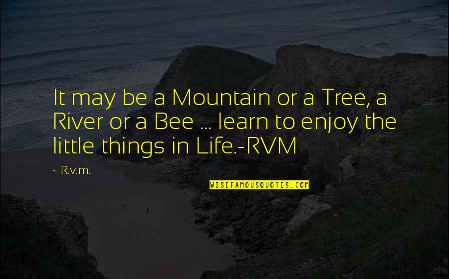 Enjoy The Little Things In Life Quotes By R.v.m.: It may be a Mountain or a Tree,