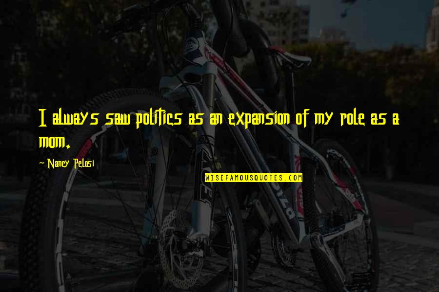 Enjoyable Journey Quotes By Nancy Pelosi: I always saw politics as an expansion of