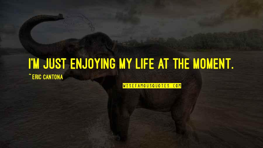 Enjoying The Now Quotes By Eric Cantona: I'm just enjoying my life at the moment.