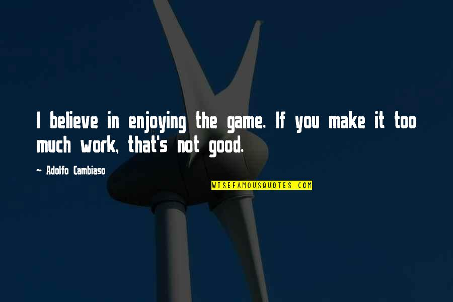 Enjoying Work Quotes By Adolfo Cambiaso: I believe in enjoying the game. If you