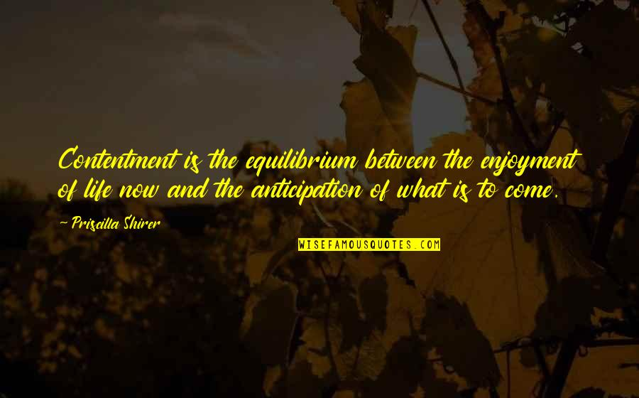 Enjoyment Of Life Quotes By Priscilla Shirer: Contentment is the equilibrium between the enjoyment of