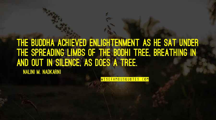 Enlightenment Buddha Quotes By Nalini M. Nadkarni: The Buddha achieved enlightenment as he sat under