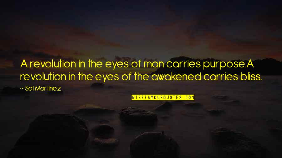 Enlightenment Buddha Quotes By Sal Martinez: A revolution in the eyes of man carries