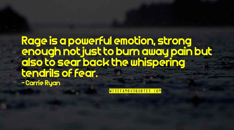 Enough Pain Quotes By Carrie Ryan: Rage is a powerful emotion, strong enough not