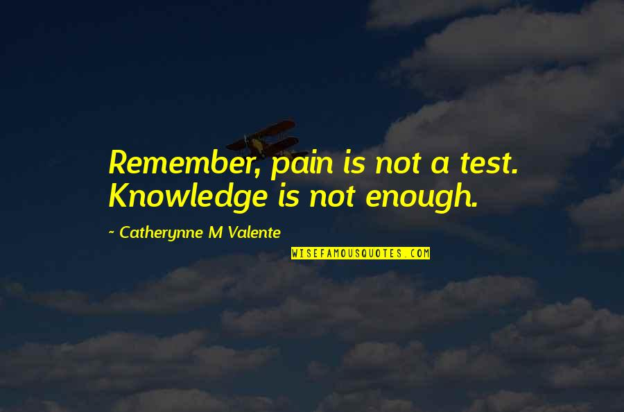 Enough Pain Quotes By Catherynne M Valente: Remember, pain is not a test. Knowledge is
