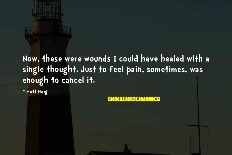 Enough Pain Quotes By Matt Haig: Now, these were wounds I could have healed