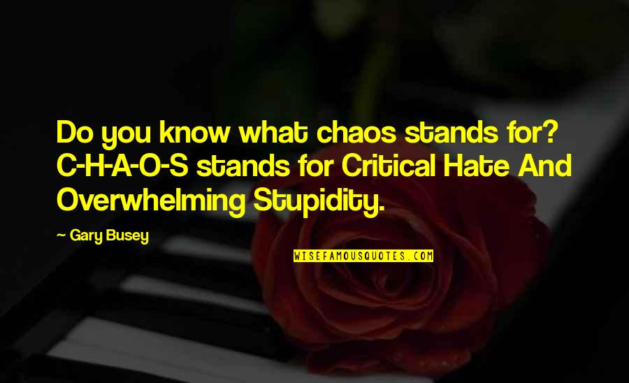 Equestrian Drill Team Quotes By Gary Busey: Do you know what chaos stands for? C-H-A-O-S