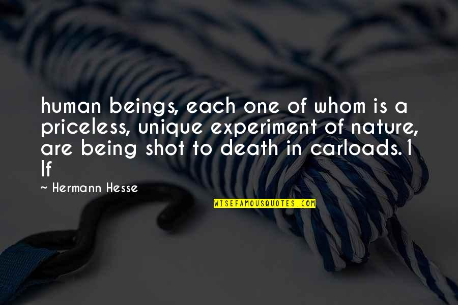 Ergon Quotes By Hermann Hesse: human beings, each one of whom is a