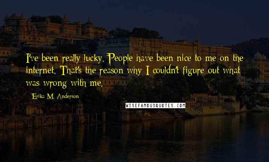 Erika M. Anderson quotes: I've been really lucky. People have been nice to me on the internet. That's the reason why I couldn't figure out what was wrong with me.