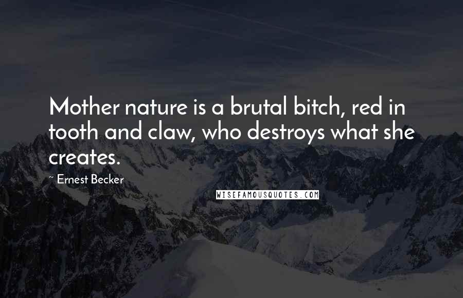 Ernest Becker quotes: Mother nature is a brutal bitch, red in tooth and claw, who destroys what she creates.