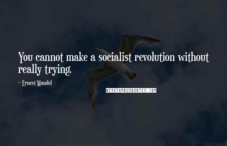 Ernest Mandel quotes: You cannot make a socialist revolution without really trying.