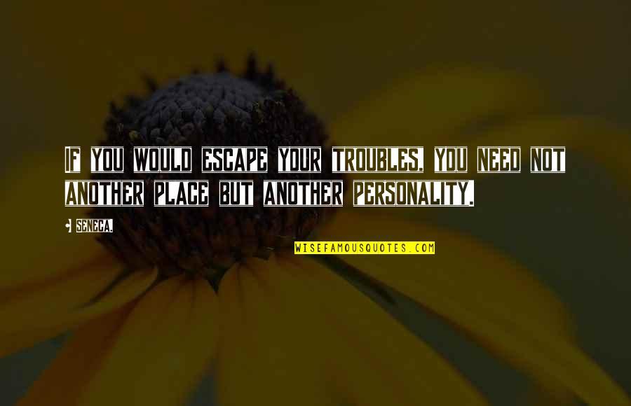 Ernesto Guevara De La Serna Quotes By Seneca.: If you would escape your troubles, you need