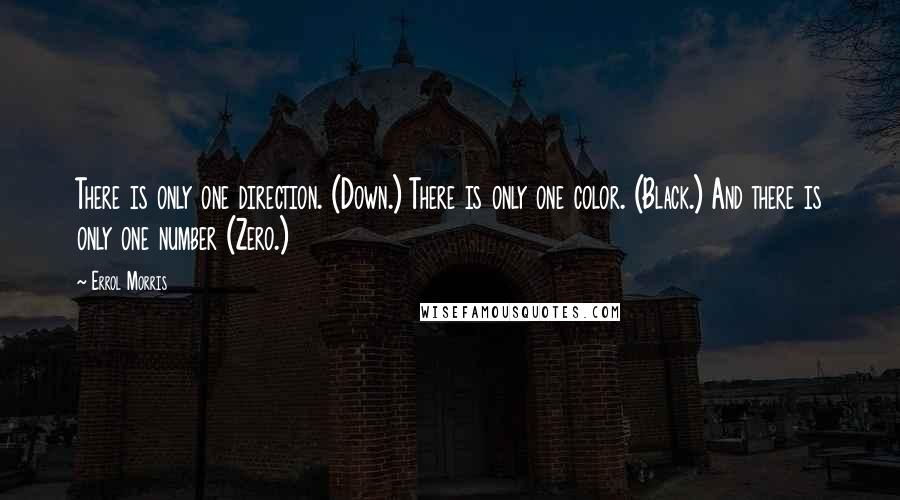 Errol Morris quotes: There is only one direction. (Down.) There is only one color. (Black.) And there is only one number (Zero.)